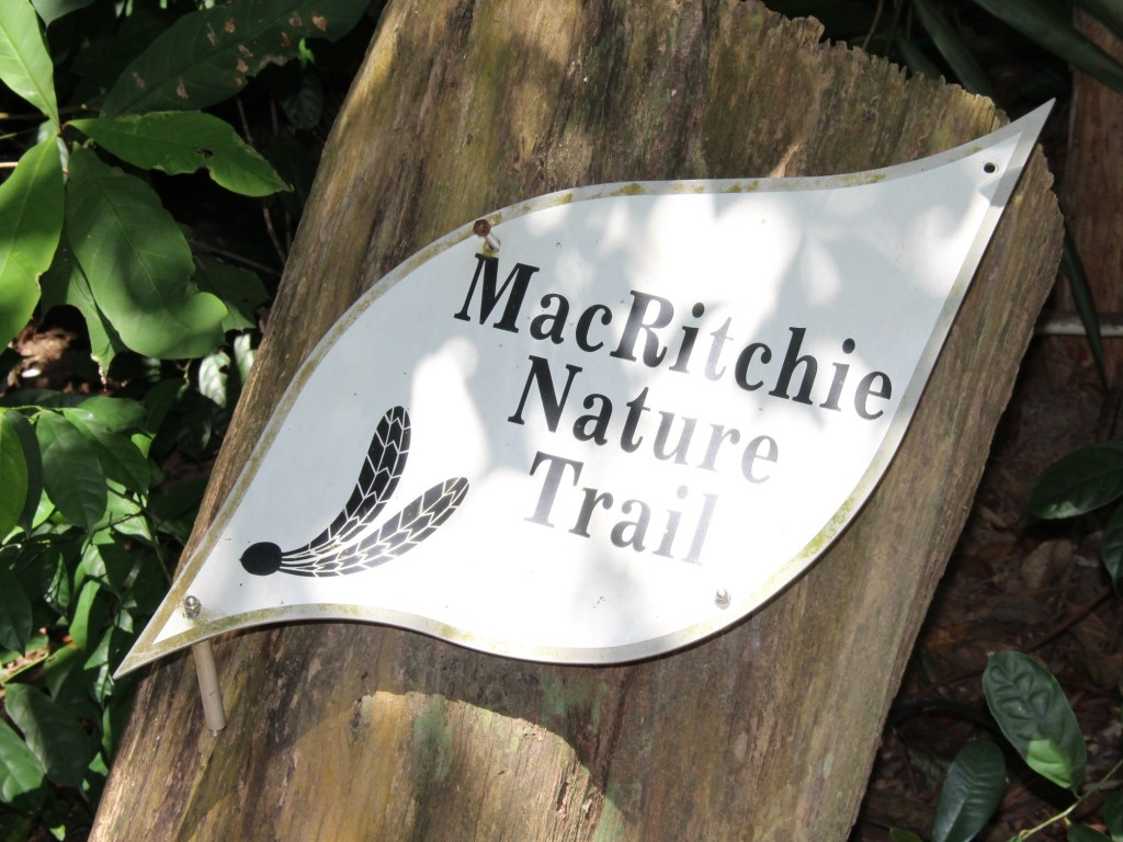 Mac Ritchie Nature Trail