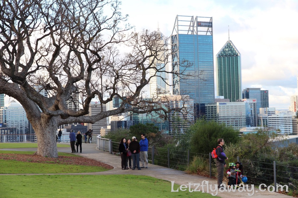 Top Things to Do in Perth with kids