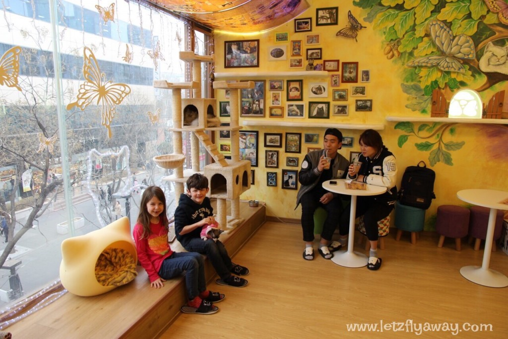 Things to See and Do in Seoul with Kids