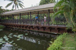 Sofitel Angkor fishing