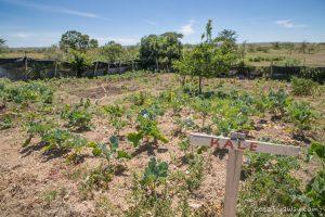 Kempinksi Olare Mara chef garden
