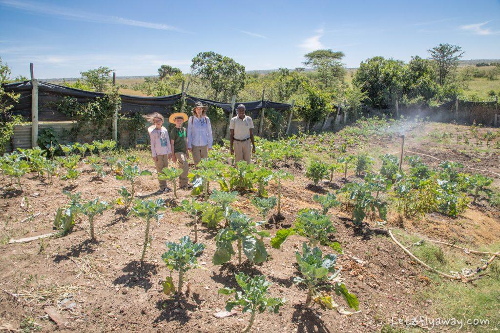 Kempinksi Olare Mara garden