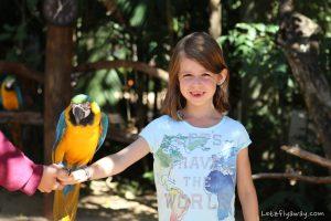 parque das aves with kids